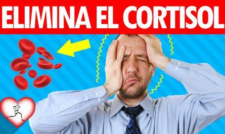 12 maneras de reducir el cortisol en sangre u hormona del estrés naturalmente