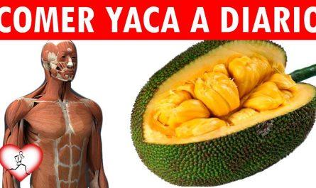 16 Asombrosos beneficios que la Yaca tiene para salud