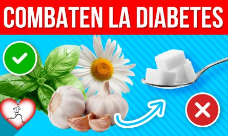 15 Plantas y especias que combaten la diabetes mejor que cualquier medicamento