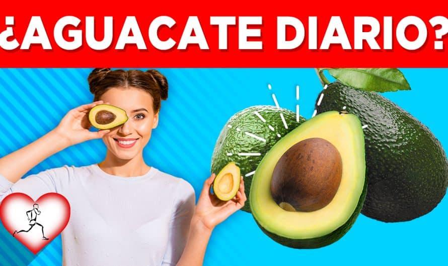 Por qué si comes AGUACATE con tu almuerzo todos los días pasará esto en tu cuerpo