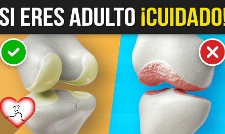 10 CAUSAS que producen PÉRDIDA de CARTÍLAGO articular y debes saber si eres adulto