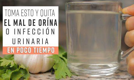 Toma esto y QUITA EL MAL DE ORÍNA o Infección Urinaria en poco tiempo