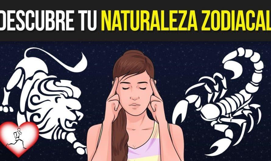 Conoce TODO acerca de los 12 signos Zodiacales ¡Descubre la naturaleza de cada uno!
