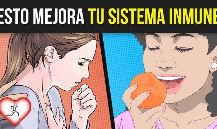 7 Alimentos que ESTIMULAN el SISTEMA INMUNOLÓGICO y 4 Maneras de POTENCIARLO