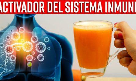 Agrega Jugo De Naranja A Este Batido Natural Y Activa Tu Sistema Inmunológico, Hidrata Y Rejuvenece