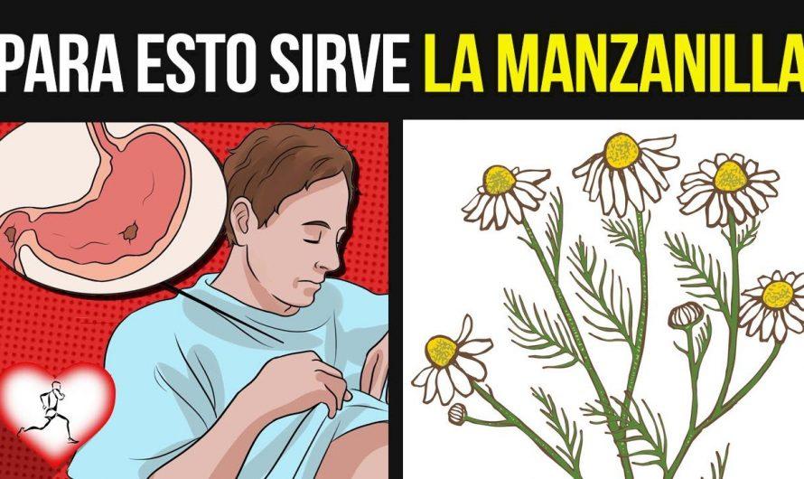 Cuando Tomas Té De Manzanilla, Estos 10 Beneficios Pasarán En Tu Cuerpo