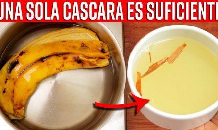 Nunca Vuelvas a Tirar La Cáscara De Plátano Mejor Prepara Esta Bebida Y Recibe Todos Estos Beneficio
