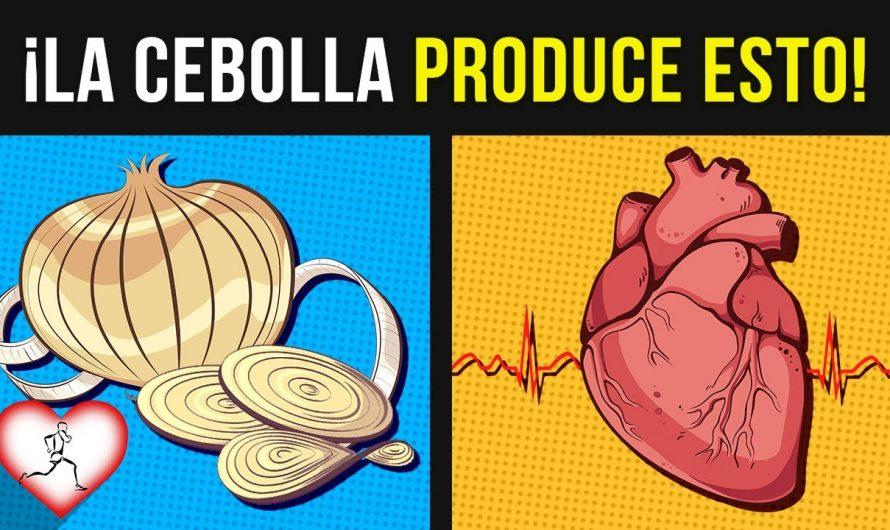 10 Beneficios de comer CEBOLLA que pocos SABEN y que tu cuerpo te lo agradecerá