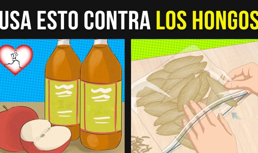 tienes hongos 9 Remedios Caseros Que Eliminan Los Hongos De Manera Rápida